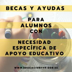 Becas y ayudas para alumnos con NEAE 2019/2020