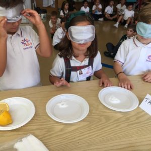 FIVE SENSES – We ❤ experiments
