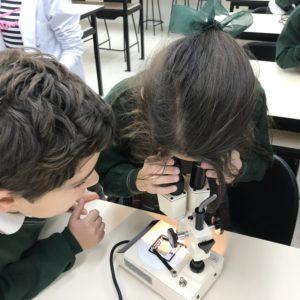 Visitamos los laboratorios de Maristas