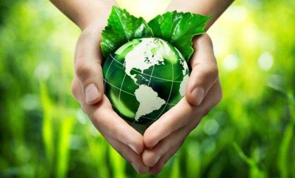 5 de junio: día del medio ambiente