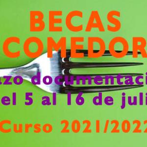 Convocatoria de bolsas para comedores escolares. Curso 2021/2022